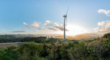 Panoramic of wind turbine above Wellington, New Zealand