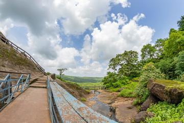 View of the tropical forest in the Sanjay Gandhi National Park Mumbai Maharashtra India. Near kanheri caves in mumbai India .
