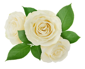 Flower arrangement made with roses isolated on a white background with clipping path.
