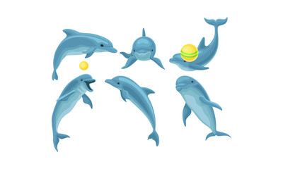 Set Of Blue Dolphins Mading Tricks With Balls Vector Illustration