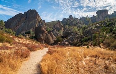 Trail Through Pinnacles National Park