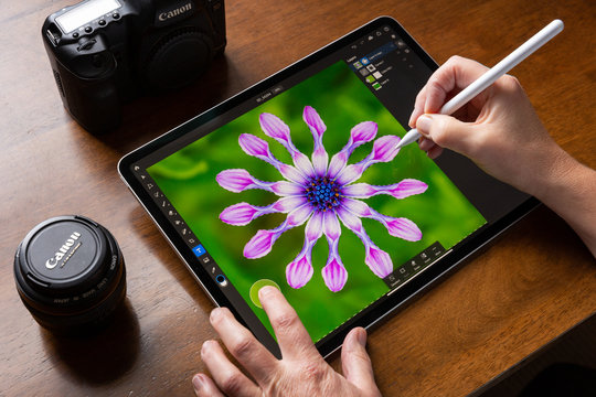 BATH, UNITED KINGDOM - NOVEMBER 7, 2019 : Close up of someone using an iPad Pro running the iOS Adobe Photoshop App to make a selection of an Osteospermum flower in a colourful photograph.