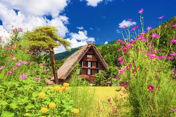 岐阜県・夏の白川郷の風景 2