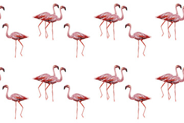 Canvas Prints Flamingo Pink flamingos on white background. Seamless pattern for fabric, paper. Summer concept design.