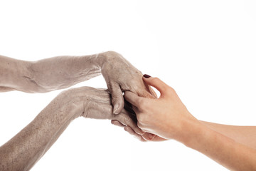 Young and old hands hold each other. Dark coloured fingers with manicure. Support and help. Young and old generation. Isolated over white background.