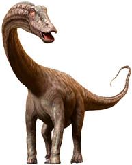 Wall Mural - Diplodocus dinosaur from the Jurassic era 3D illustration