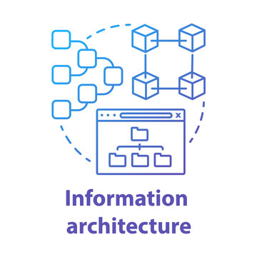Information architecture concept icon. Software development kit idea thin line illustration. Managing user information and sitemap. Program developer. Vector isolated outline drawing