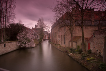 Wall Murals Bridges Brugges in belgium
