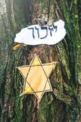 "Hebrew inscription ""remember"" and Star of David nailed to a tree in a park"