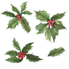 Beautiful holly (Ilex) berries isolated on white background.  Watercolor painting. Can be used for New Year and Christmas decor, greeting cards, cloth printing.