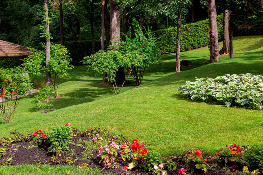 landscape design of a hilly park with a green lawn and a flowerbed with blooming flowers lit by sunlight and in the shade under tall trees.