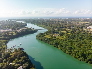 High angle shot of a river going through the tropical forest captured in Mombasa, Kenya Wall mural