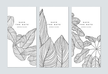 Set of botanical brochure cover template design, leaves line art ink drawing in black on white