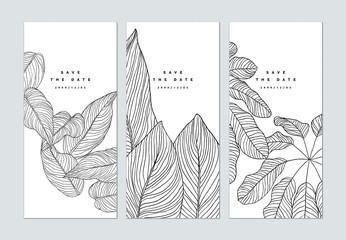 Fototapeta Set of botanical brochure cover template design, leaves line art ink drawing in black on white obraz