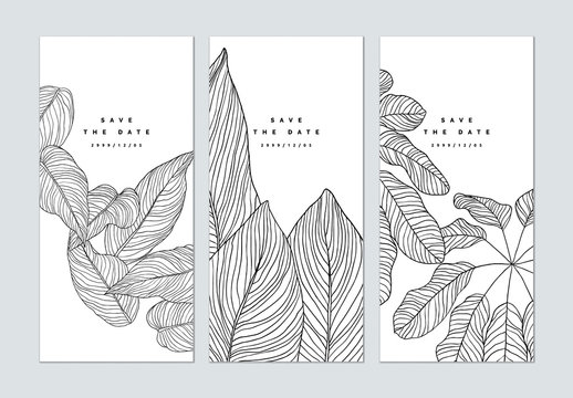 Set of botanical brochure cover template design, leaves line art ink drawing in black on white