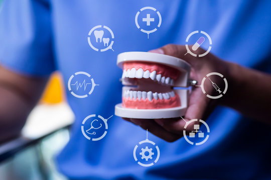 Professional doctor dentist holding dental with teeth icons, Health, dentistry concept.