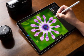 BATH, UNITED KINGDOM - NOVEMBER 7, 2019 : Close up of a woman using an iPad Pro running the iOS Adobe Photoshop App to make a selection of an Osteospermum flower in a colourful photograph.