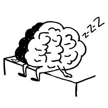 Brain sleeps and sits on the edge of the bed. Too lazy to Wake up in the morning.