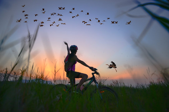 bird and flocks fly over medow lake with cheerfuly of woman rider bike in rise hand up in the field at sunset