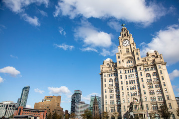 View of the iconic Royal Liver Building in Liverpool, UK