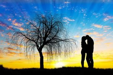Wall Mural - enamorados besandose en el campo