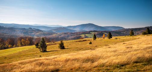 Colorful autumn carpatian mountains landscape