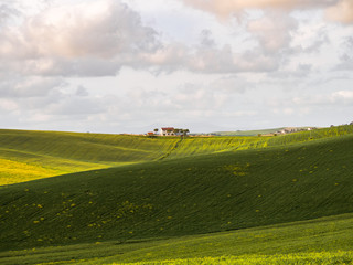 green Tuscan hills on a sunny spring day