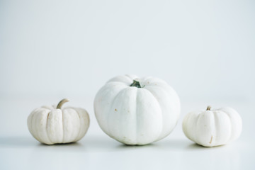 Fresh pumpkin isolated on white background. For Halloween, thanksgiving holiday and Autumn theme