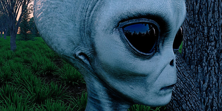Alien Grey Humanoid Extraterrestrial Being in a forest extremely detailed and realistic high resolution 3d illustration