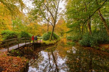 Aluminium Prints Nature Autumn in Holland