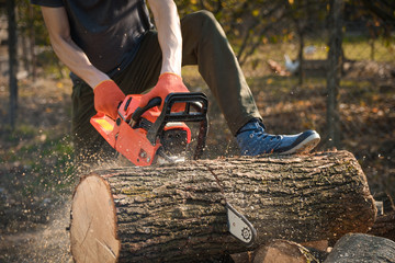 Chainsaw that stands on a heap of firewood in the yard on a beautiful background of green grass and forest. Cutting wood with a motor tester