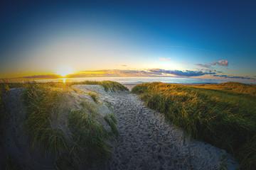 Weg durch die Dünen zum Sonnenuntergang an der dänischen Nordseeküste