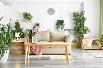 Interior of living room with green houseplants