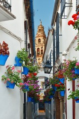 Cordoba Beautiful flower decoration