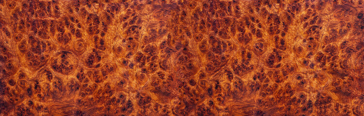 Poster Firewood texture Amboyna burl wood striped Exotic wooden beautiful pattern