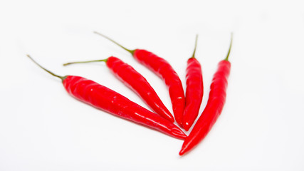 Canvas Prints Hot chili peppers red hot chili pepper on white background