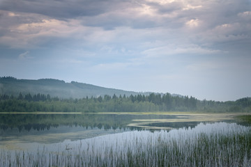 Landscape of river scenery green forest and sunlight on cloudy day Sweden