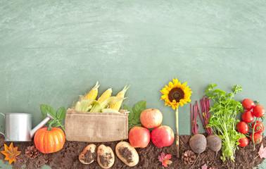 Autumn organic food produce Wall mural