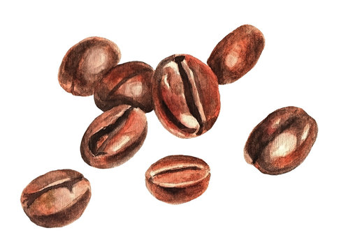 Coffee beans, watercolor
