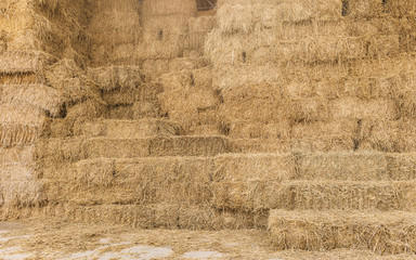 dry rice haystack in the mow