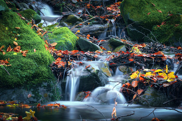 Mountain water stream on stones. Autumn nature in mountain forest river with rock and green moss.
