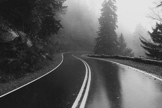 road in winter.black asphalt road and white dividing lines.