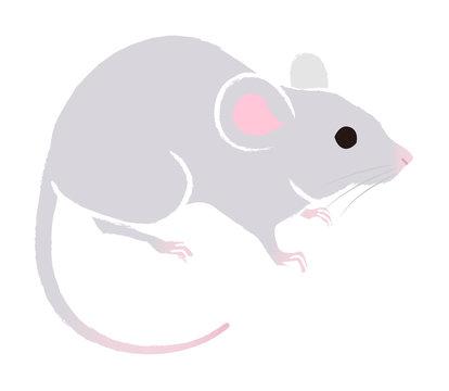 ネズミ - 子年年賀状素材