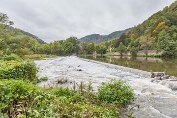Naturschutzgebiet Nieverner Wehr bei Nievern, Lahnstein und Bad Ems