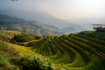 Longji Rice Terraces in China Sunrise view