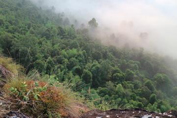 Printed kitchen splashbacks Khaki moutian travel white green forest landscape