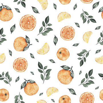 Watercolor seamless pattern with oranges tangerines citrus fruits green leaves isolated on white background. Botanical illustration for fabric textile