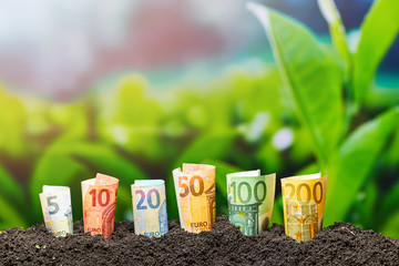 Foto auf Acrylglas Lime grun Euro Money. Different Euro banknotes from 5 to 200 Euro. Money and Agriculture texture.