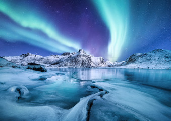 Aluminium Prints Northern lights Aurora Borealis, Lofoten islands, Norway. Nothen light, mountains and frozen ocean. Winter landscape at the night time. Norway travel - image