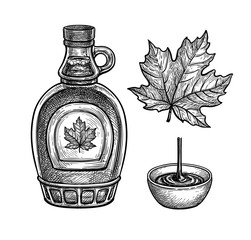 Ink sketches of maple syrup and leaf